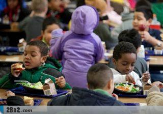 به تغذیه دانش آموزان اهمیت دهید